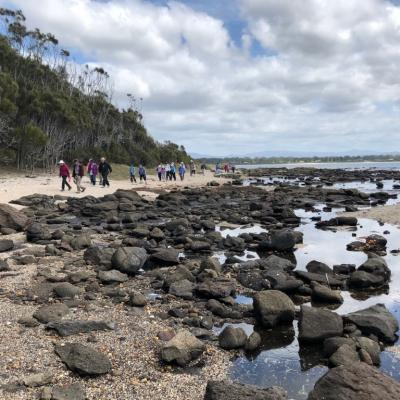 Broulee Island and Batemans Bay Trip 25 October 2018 Singleton