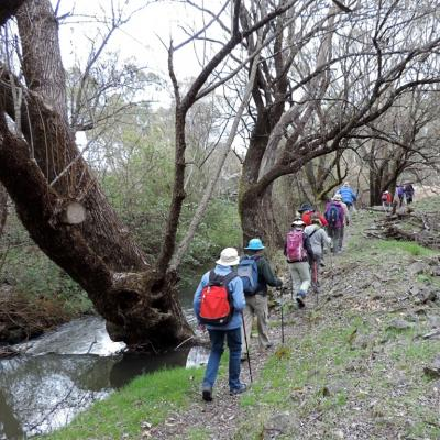 Hume and Hovell Track, September 2017