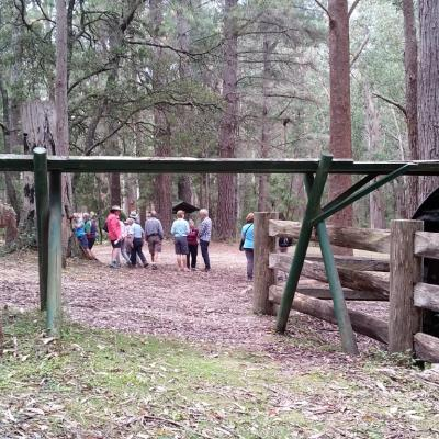 Lowden Forest Park Water Wheel Tallaganda State Forest 5 March 2019