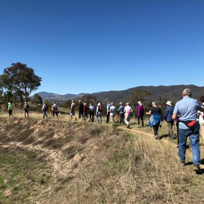 McQuoids Hill and Mt Neighbour 19 October 2018 Singleton