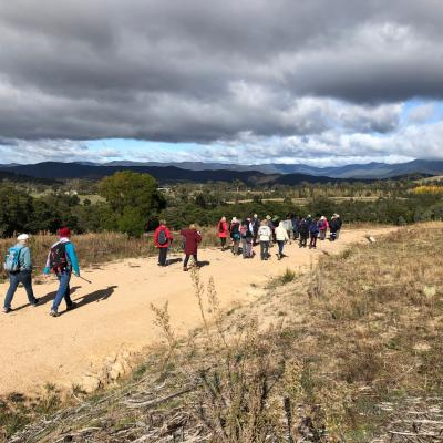 Stromlo Forest Park 8 May 2019 Singleton IMG 3779