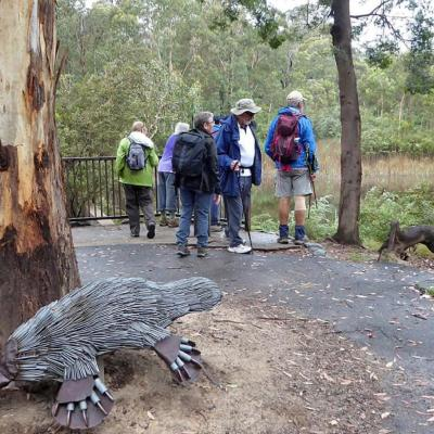 Tidbinbilla NR 21 December 2018 Marshall