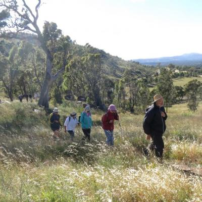 Walking near Kambah on Sunday, 14 January 2018