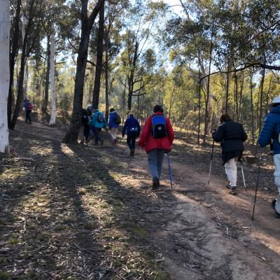 Weston to Woden 21 June 2019 Singleton IMG 4216