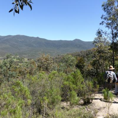 from Eliza Saddle track towards Tidbinbilla Peak and Camel Hump, 29 Oct 2014