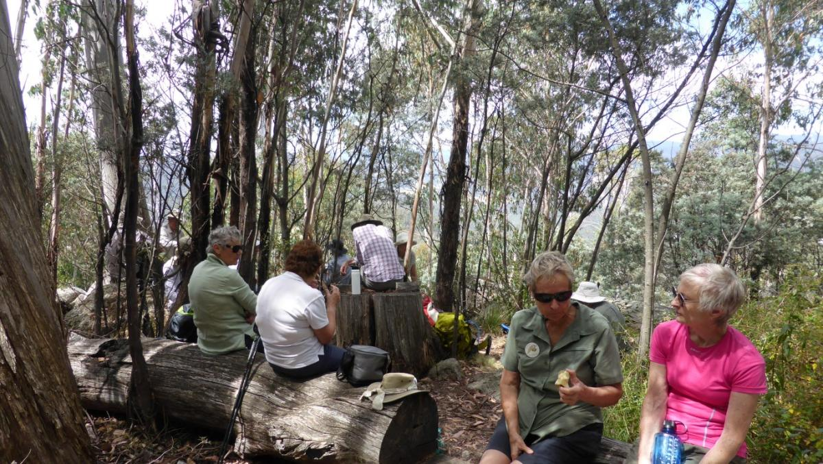lunch at the Orroral Valley Lookout off the Square Rock Walking Track, 15 February 2018